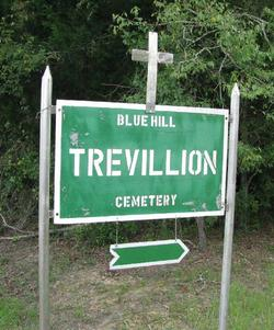 Annie Elizabeth <i>Trevilion</i> Smith