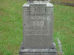 Benjamin C. Arp