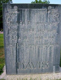 Susannah <i>Pulsipher</i> Davis
