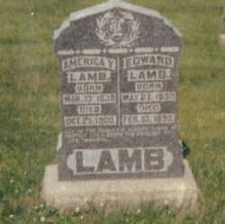 America V. <i>Manning</i> Lamb