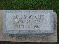 Hollis W Catt