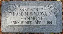 Baby Hammond