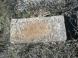 Elmer Mallard