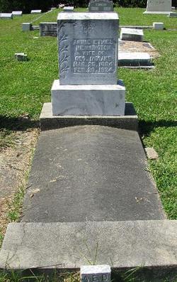 Annie Ethel <i>Henington</i> Didlake