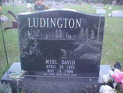 Merl David Ludington