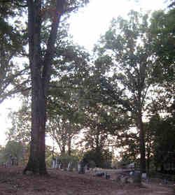 Singleton Springs Cemetery