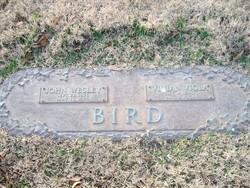 Vivian Viola <i>Blackwell</i> Bird