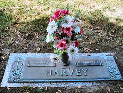 Samuel Perez Harvey, Jr