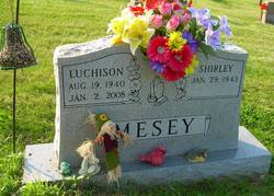 Luchison L Mesey
