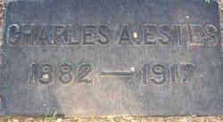 Charles A Estes
