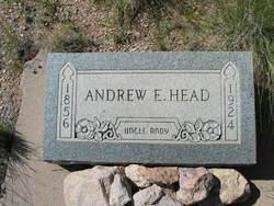 Andrew E Head