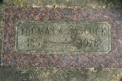 Thomas A. Babcock