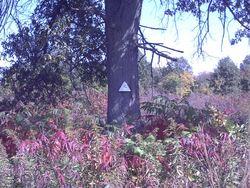 Root Cemetery