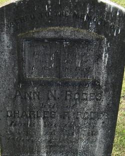 Ann N. Rodes