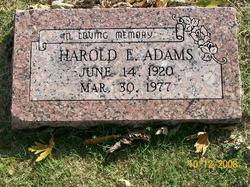 Harold E Adams