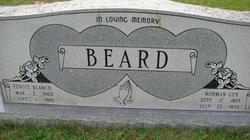 Norland Guy Beard