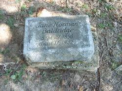 Malinda Jane <i>Norman</i> Baldridge