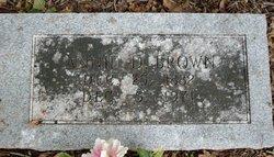 Annie D Brown