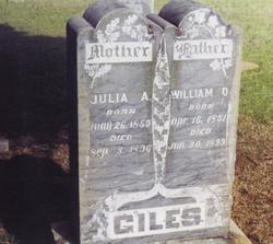 Julia Ann <i>Groves</i> Giles
