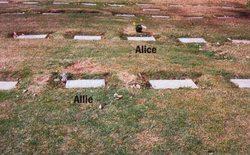 Alice Vera <i>Bachman</i> McKinney