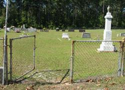 Pinckney Baptist Church Cemetery