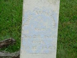 William Freidinger