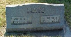 William Thompson Hays