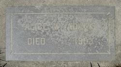 Alice W Adams