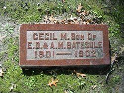 Cecil M Batesole