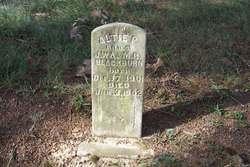 Altie P. Blackburn