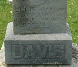Ellis L. Davis
