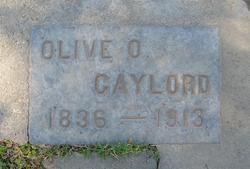 Olive O Gaylord