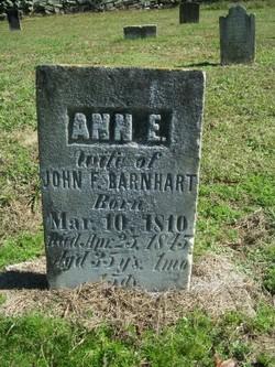 Ann Elizabeth <i>Petrea</i> Barnhardt