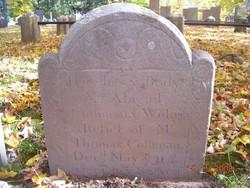 Abigail <i>Titus</i> Cushman