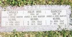 Julia Ann Kearl