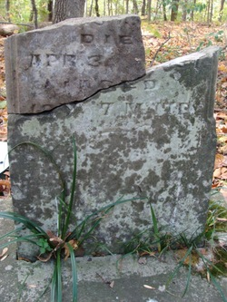 Mary E. <i>Johns</i> Davis