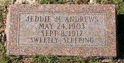 Jeddie M Andrews