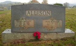 John Mackey Allison