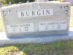 Thomas Fletcher Burgin
