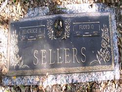 Floyd G Sellers