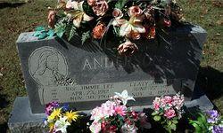 Rev Jimmie Lee Anderson