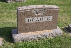 Heiko U Brauer