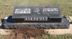 Albert K. Bergman