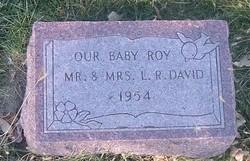 Roy David