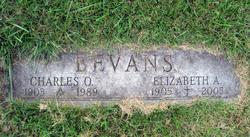 Elizabeth Alice Betty <i>Harryman</i> Bevans