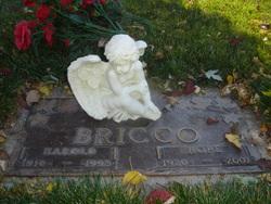 Harold D Bricco