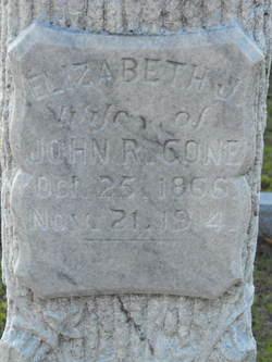 Elizabeth J Cone