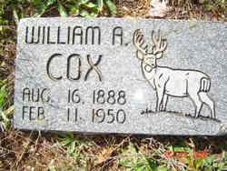 William A Cox