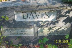 Sarah Jane <i>Ashby</i> Davis