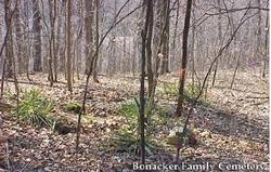 Bonacker Family Cemetery